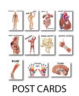 Postal Anatómica Set de 3